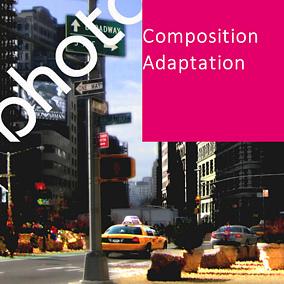 PHOTO RECOMPOSEE | Adaptation |